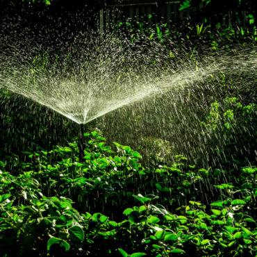 Programação e Rega Avisadas: ajustar a rega às necessidades de água